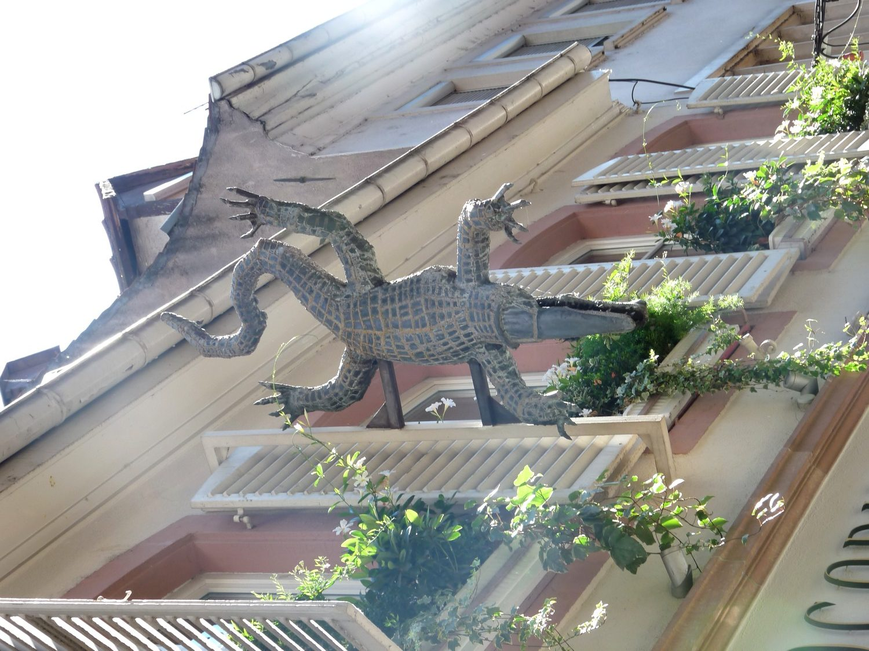 Crocodile Strasbourg histoire