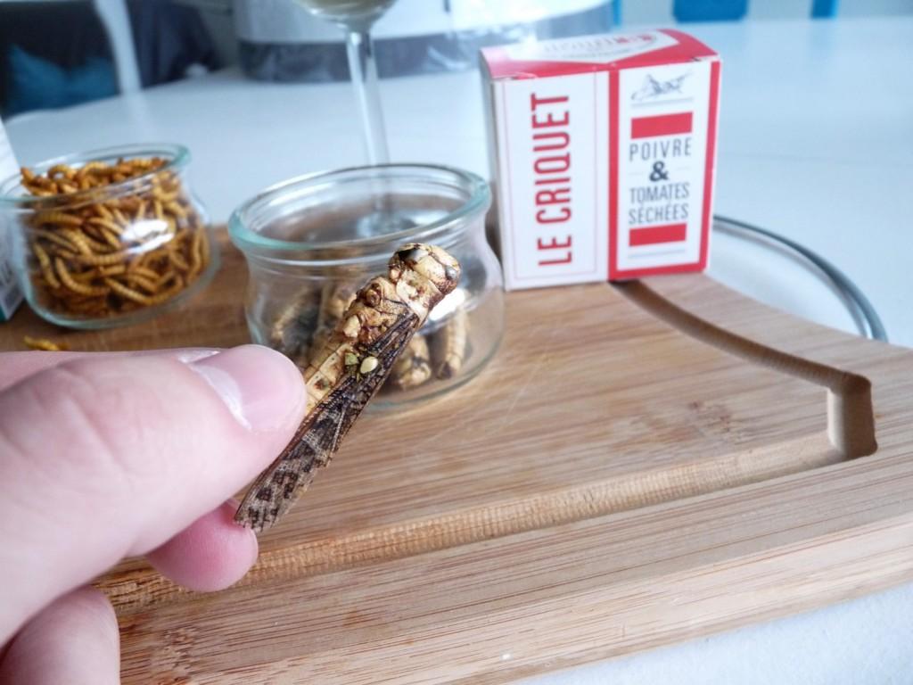 Manger des insectes comestibles KurioCity